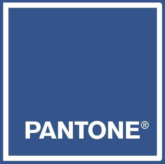 PANTONE COLOR DEL AÑO 2020
